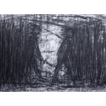 """Crossing Open Ground"" (series)   charcoal   2001 76x55cm"
